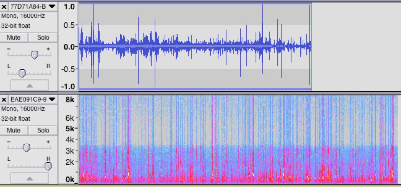 Rappresentazione visuale dell'onda sonora (in alto) e dello spettrogramma (in basso) con il software audacity delle conversazioni tra due makers nella progettazione di un dispositivo di lettura dati