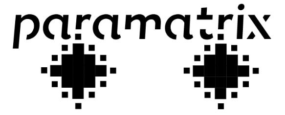 paramatrix_logo