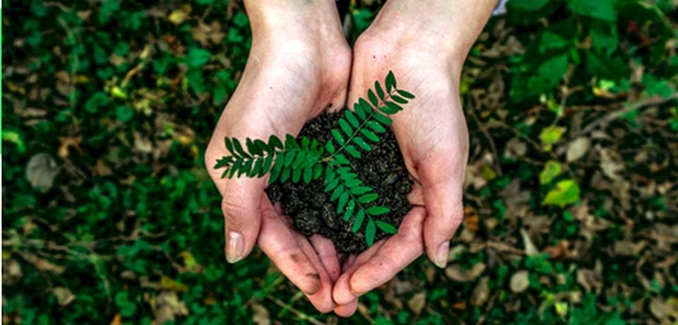 Reflow, progetto Horizon 2020 sulla circular economy